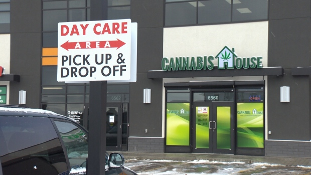 Daycare cannabis