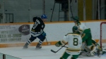 Mustangs champing for SJHL title
