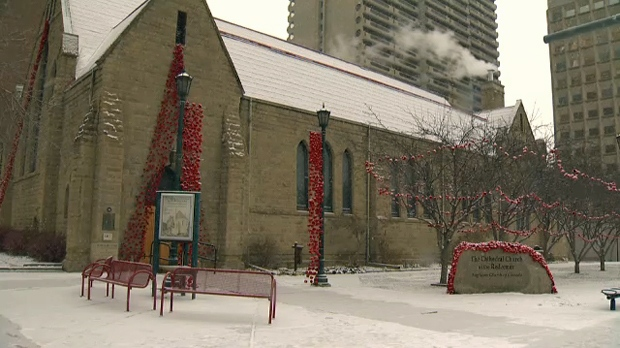 More than 8,000 hand-knit poppies are on display outside of the Cathedral Church of the Redeemer in downtown Calgary