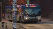 Edmonton bus