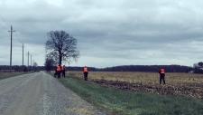 Bodkin Road bodies