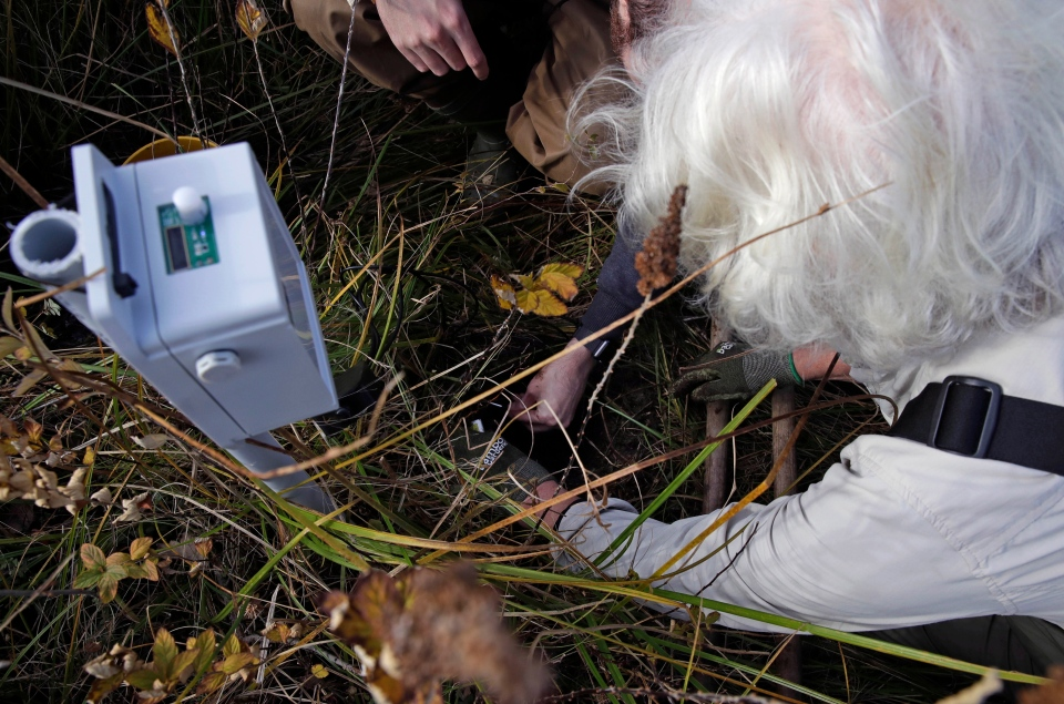 In this Thursday Nov. 1, 2018 photo, Glorianna Davenport, president of the Living Observatory and co-founder of the MIT Media Lab, buries temperature and moisture probes while installing a sensor node at a marshland in Plymouth, Mass. (AP Photo/Charles Krupa)
