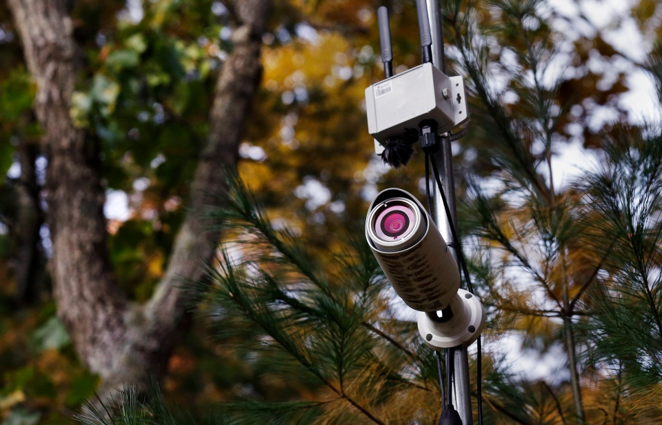 In this Thursday Nov. 1, 2018 photo, a camera monitors activity at a tree line adjacent to a marshland in Plymouth, Mass., which is equipped with wireless sensors, cameras and microphones to create a virtual reality world inspired by nature's rhythms. (AP Photo/Charles Krupa)