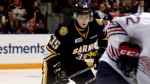 The Sarnia Sting play the Oshawa Generals in Ontario Hockey League action on Friday, Oct.21, 2016. (THE CANADIAN PRESS / Dhiren Mahiban)