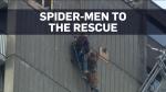 MTL rescue