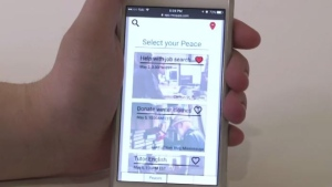 Trafalgar students build the 'PeaceTogether' app to help the community