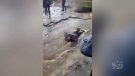 Facebook video shows Brett Corbett being forced to lie down in a stream. (Brandon Jolie/Facebook)