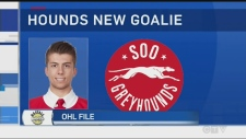 In this week's OHL update, Tony Ryma takes a look at what our northern teams, Sudbury Wolves, North Bay Battalion, and Soo Greyhounds, have been up to.