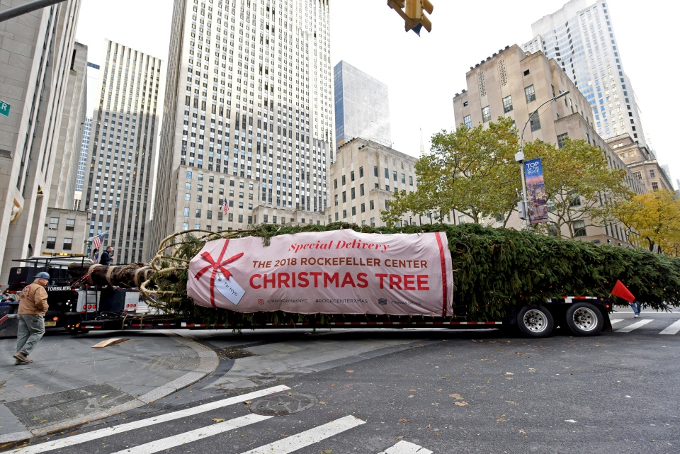 The 2018 Rockefeller Center Christmas tree, a 72-foot tall, 12-ton Norway Spruce from Wallkill, N.Y., pulls into Rockefeller Plaza, Saturday, Nov. 10, 2018, in New York.(Diane Bondareff/AP)