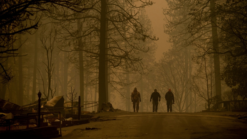 Sheriff's deputies search for human remains in a neighborhood destroyed by the Camp Fire on Saturday, Nov. 10, 2018, in Paradise, Calif. They found more than five victims during their afternoon's work. (AP Photo/Noah Berger)