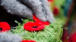 People place poppies following the Ceremony of Remembrance held at Queen's Park in Toronto, on Sunday, November 11, 2018. THE CANADIAN PRESS/Christopher Katsarov