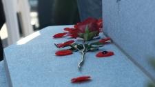 Somber ceremony at Beechwood cemetery