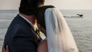 whale wedding photo