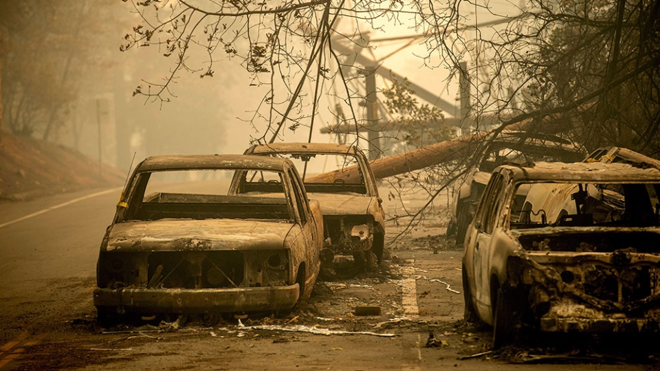 Abandoned cars, scorched by the wildfire, line Pearson Rd. in Paradise, Calif., on Saturday, Nov. 10, 2018. (AP Photo/Noah Berger)