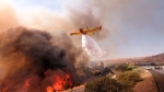 An air tanker drops water on a fire along the Ronald Reagan (118) Freeway in Simi Valley, Calif., Monday, Nov. 12, 2018. (AP / Ringo H.W. Chiu)