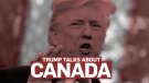 Trump talks about Canada