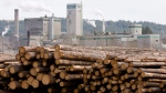 FILE -- Logs are piled up at West Fraser Timber in Quesnel, B.C., Tuesday, April 21, 2009. (THE CANADIAN PRESS/Jonathan Hayward)