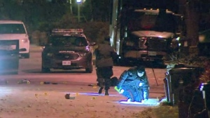 A shooting in Humberlea has left one male victim dead.