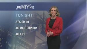 Alberta Primetime November 13, 2018