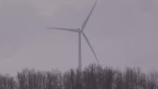 Study on impact of wind turbines falls flat