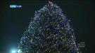 Lighting the Christmas tree at city hall