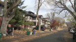 Neighbours in Ottawa's Glebe neighbourhood are unhappy with one resident's plans to build a new house.