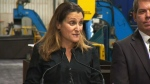 'Illegal and absurd': Freeland on tariffs
