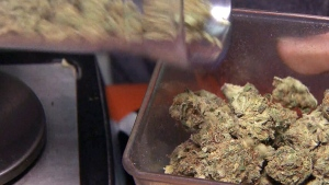 Pot shops rules, expanded LCBO hours