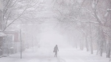 A pedestrian crosses the street as a winter storm brings the first significant snowfall in Halifax on Friday, November 16, 2018. THE CANADIAN PRESS/Darren Calabrese