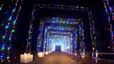 'Magic of Lights' starts Friday