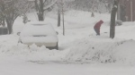 Snow falls for the third straight day in Barrie, Ont. covering streets, cars and forcing many to dig out on Friday, November 16, 2018 (CTV News/Rob Cooper)