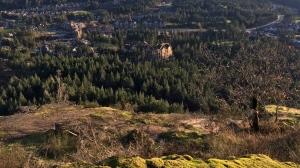 Mount Finlayson is shown. Nov. 16, 2018. (CTV Vancouver Island)