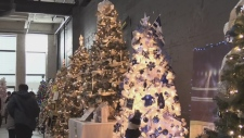 Sault Ste. Marie's Festival of Trees is on and CTV Northern Ontario's Jairus Patterson looks into why this is such an important fundraiser.