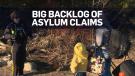 asylum card