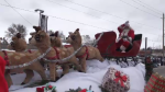 Kitchener Santa Clause Parade was held on Saturday morning.