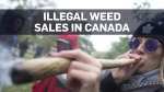 More than a third of pot users buy illegally: Poll