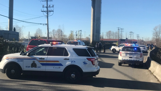 There are more than a dozen police cruisers securing a scene directly beneath the Golden Ears Bridge.