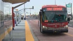 The city's three MAX rapid transit bus lines are scheduled to come online on November 19, 2018.