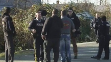 Grisly discovery near Golden Ears Bridge