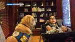 poppy therapy dog