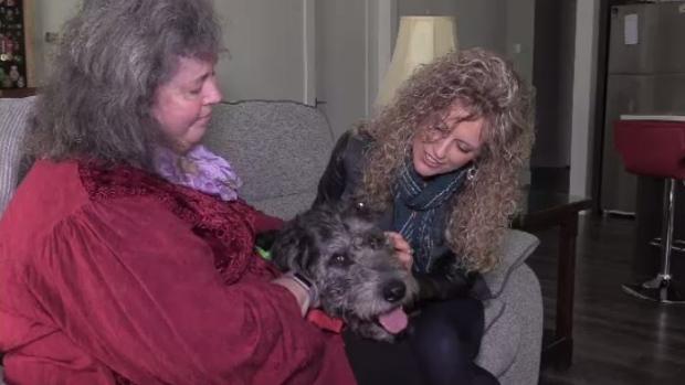 Halifax women grateful for life-saving cancer 'dognosis'