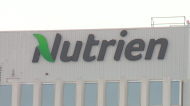 Concerns over Sask. jobs at Nutrien