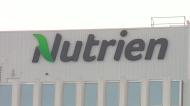 Concerns over Sask. jobs at Nutrien