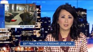 newscast nov. 19, 2018
