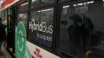 TTC Hybrid buses