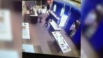 A suspect removes a cell phone from a display in a Bell store in a mall in northeast Calgary during a November 2018 theft targeting electronics