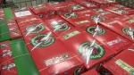 Operation Christmas Child - shoeboxes