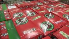 Operation Christmas Child - shoeboxes