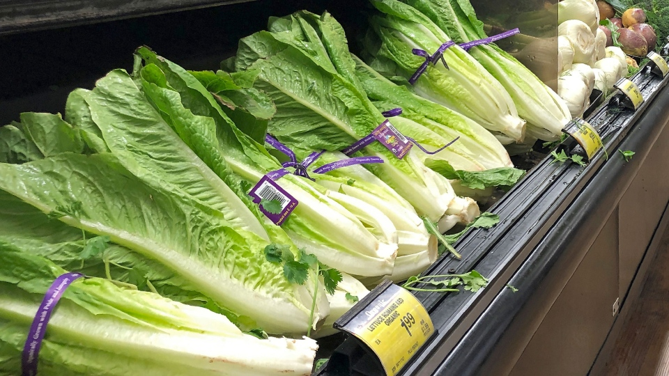 Stores, restaurants pull romaine as E.coli case reported ...