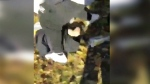 Four teens charged in brutal Orleans beating